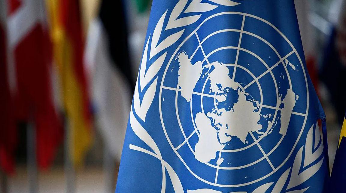 Raport al Organizației Națiunilor Unite: Incriminarea criticii teoriei de gen